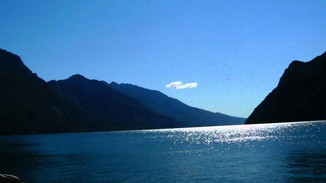 Gabbiano avvistato a riva del Garda: Embè?
